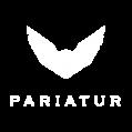 pariatur